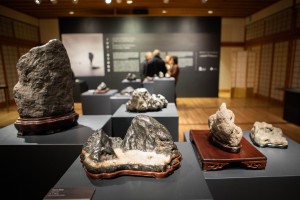 af_ice-and-stone-opening-020919-image-013.jpg