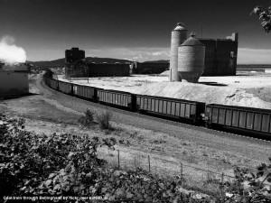 Coal train through Bellingham