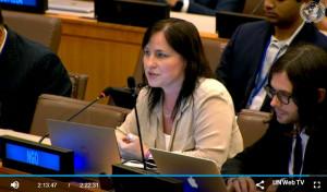 Heather Haase, NY NGO Committee on Drugs