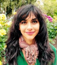 Writer/activist Ari Honarvar