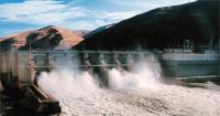 Salmon killing Snake River dam